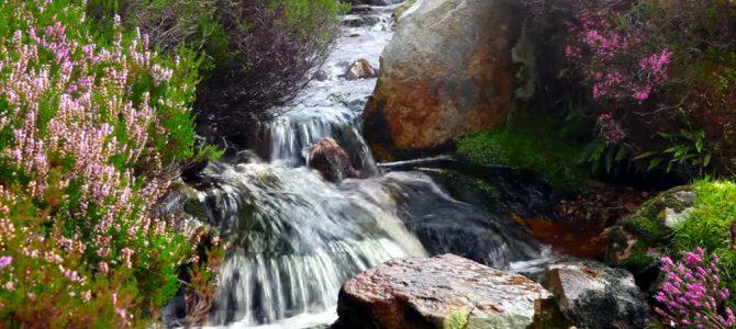 Teatr małego wodospadu…