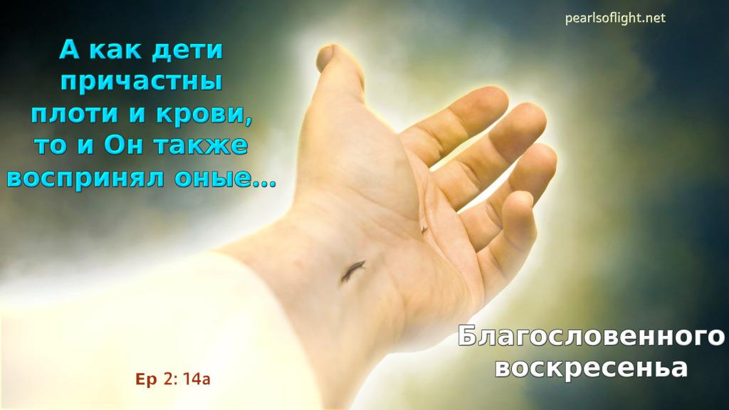 А как дети причастны плоти и крови, то и Он также воспринял оные…