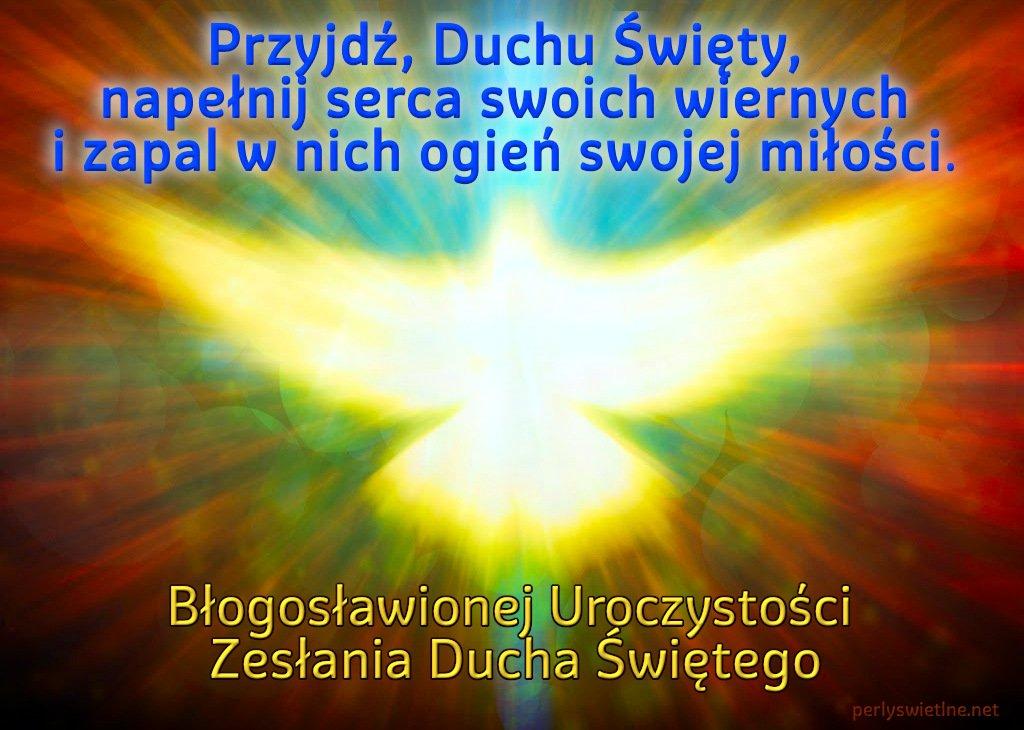 Przyjdź, Duchu Święty, napełnij serca swoich wiernych i zapal w nich ogień swojej miłości.